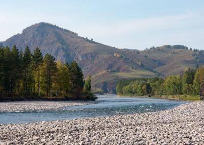Op de oever van de Charysh rivier