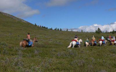 Hoe bereik je Altai? Een ultieme gids