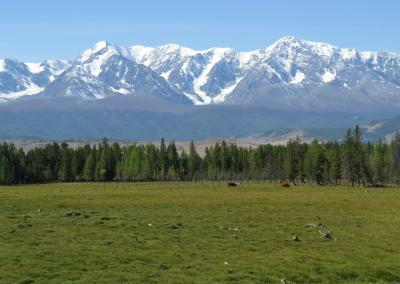 Noordelijke Chuya bergketen in de Kurai Steppe