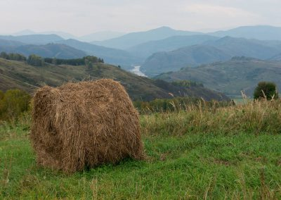 Hooi en de vallei van de Charysh rivier