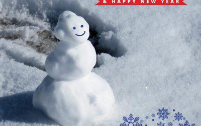 Vrolijk Kerstmis en een gelukkig nieuwjaar!